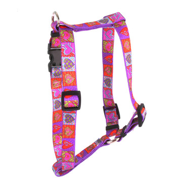 """Crazy Hearts Roman Style """"H"""" Dog Harness"""
