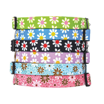 Daisies - Personalized Dog Collar