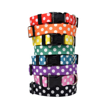 Large Polka Dots - Personalized Dog Collar
