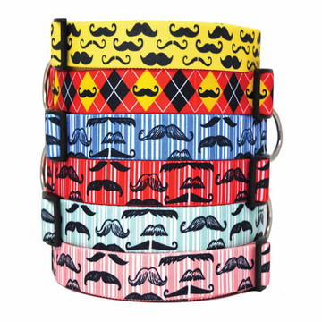 Moustache Mania - Dog Collar