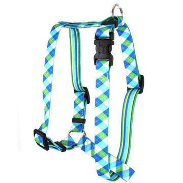 """Blue and Green Argyle Roman Style """"H"""" Dog Harness"""