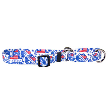 Patriotic Collection - Martingale Dog Collar