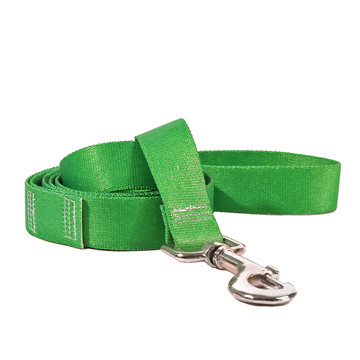 Solid Kelly Green Dog Leash
