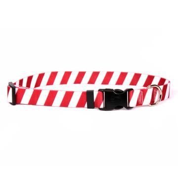 Team Spirit Red and White Dog Collar