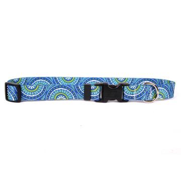 Radiance Blue Dog Collar