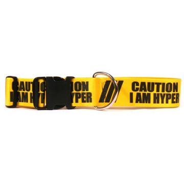 2 Inch - Caution I Am Hyper Dog Collar