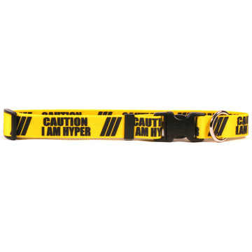 1 Inch - Caution I Am Hyper Dog Collar