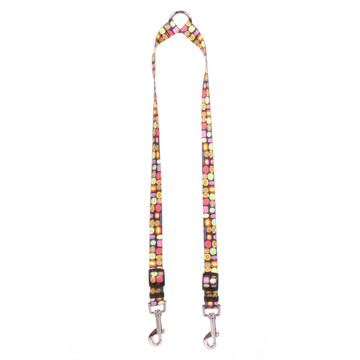 Bright Fun Coupler Dog Leash