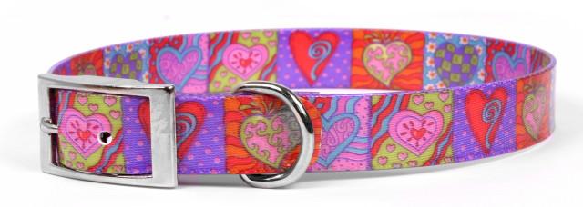 Crazy Hearts Elements Dog Collar
