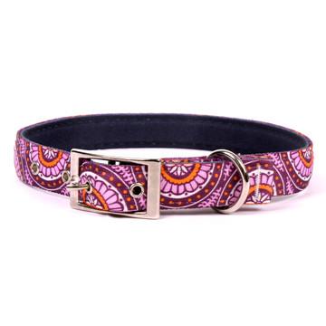 Radiance Purple Uptown Dog Collar