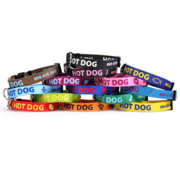 Personalized Dog Collar with Custom ID