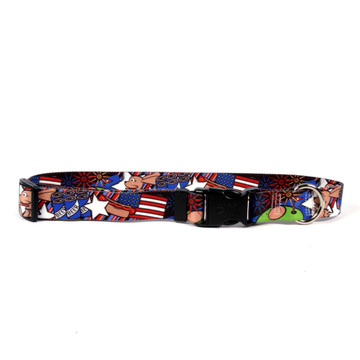 American Dream Break Away Cat Collar