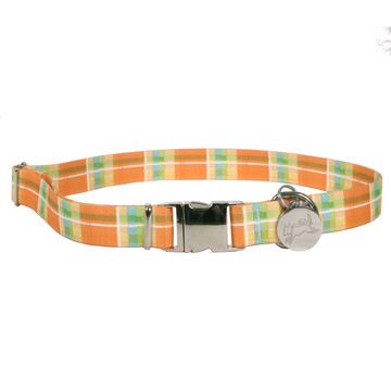 Southern Dawg Madras Orange Premium Dog Collar