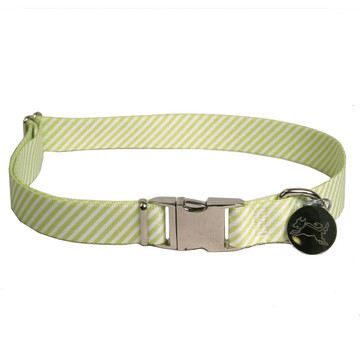 Southern Dawg Seersucker Green Premium Dog Collar