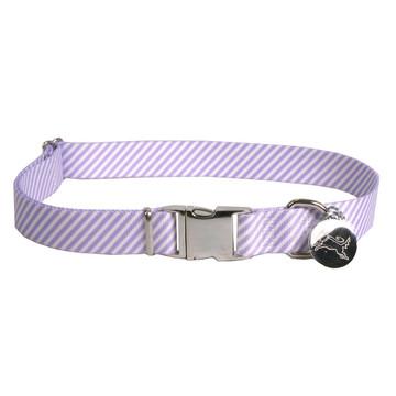 Southern Dawg Seersucker Purple Premium Dog Collar