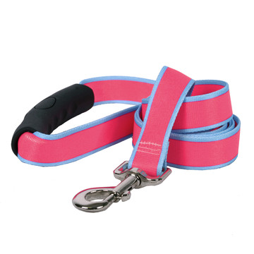 Sterling Stripes Pink and Light Blue Dog Leash