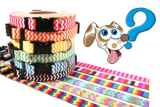 Grab Bag Dog Collar - Made in the USA