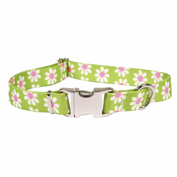 Green Daisy Premium Metal Buckle Dog Collar