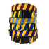 Team Spirit-Yellow Stripe - Personalized Dog Collar