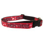 Valentine's Day - Personalized Dog Collar