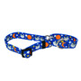 Animal Friends - Martingale Pet Collar