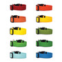 Solid Colors - Personalized Martingale Pet Collar