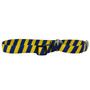 Team Spirit-Yellow Stripe - Martingale Pet Collar