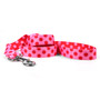 Valentine Polka Dot Dog Leash