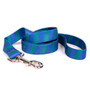 Team Spirit Blue and Green Dog Leash