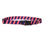 Team Spirit Navy, Red and Gray Dog Collar