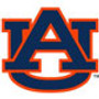 Auburn Step-In Dog Harness