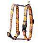 "Pumpkin Party Roman Style ""H"" Dog Harness"