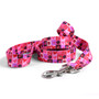 Valentines Blocks Dog Leash