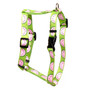 Wonderful Watermelons Roman Style Dog Harness