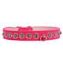 pink Starlight Filigree Crystal Dog Collar
