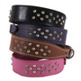 2 Inch Wide SmoothStud Leather Dog Collar with Nameplate