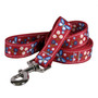 Festive Butterfly Red Dog Dog Leash