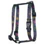 Paisley Skulls Multi Roman Style H Dog Harness