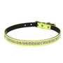 Neon 1-Row Crystal Dog Collar
