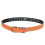 Neon 2-Row Crystal Dog Collar