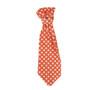 Designer Dog Neck Ties