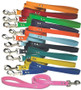 Colored Leather Dog Leash