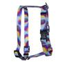 Pineapple Daze Roman Style H Dog Harness