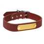 Personalized Engraved Leather Dog Collar with Nameplate
