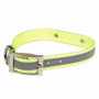 Reflective Sunglo Waterproof Dog Collar