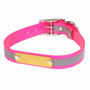 SunGlo Personalized Reflective Dog Collar with Nameplate