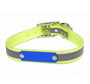 Reflective SunGlo Personalized Dog Collar with Nameplate