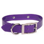 SunGlo Personalized Engraved Dog Collar with Nameplate