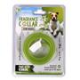 Sweet Olive Fragrance Scented Dog Collar