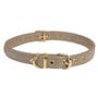 1-Row Crystal Color Leather Dog Collar